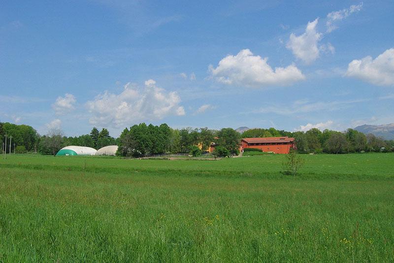 Intorno-alla-fattoria