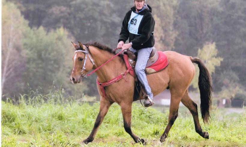 Quarta tappa grillo championship: endurance