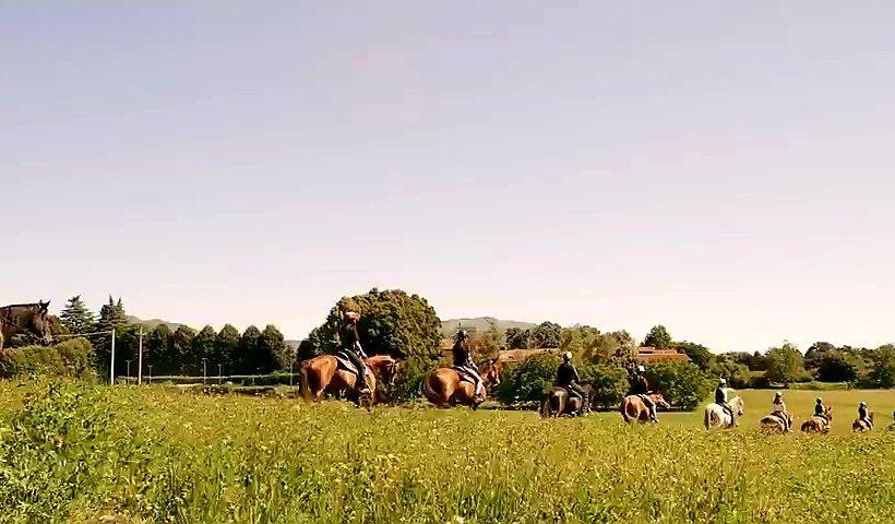 Campus estivi di equitazione